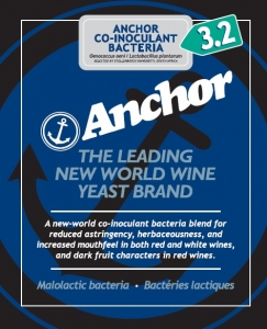Anchor Duet Arom Co-inoculant Bacteria 3.2 25gr