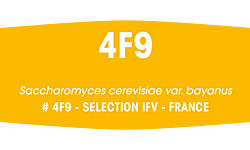 Fermivin® 4F9 500g (formerly Fermicru® 4F9)