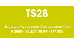 Fermivin® TS28 500g
