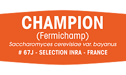 Fermivin® Champion 500g (formerly Fermichamp®)