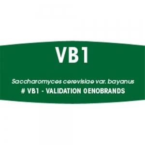 Fermicru VB1 500g