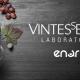 Cabernet Sauvignon winemaking