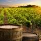 Oak Alternatives Winemaking