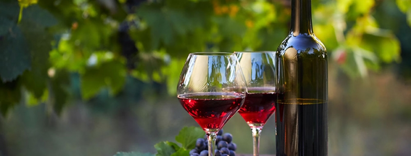 Perfecting Wines naturally