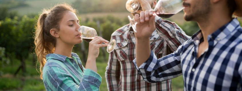 Wine Fining Questions